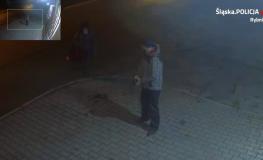Rybnicka policja poszukuje mężczyzny, który usiłował zgwałcić kobietę
