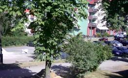 SM Jastrzębie-Zdrój
