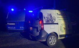 Czechowiccy policjanci uratowali małe sarniątko   Fot. Policja Śląska